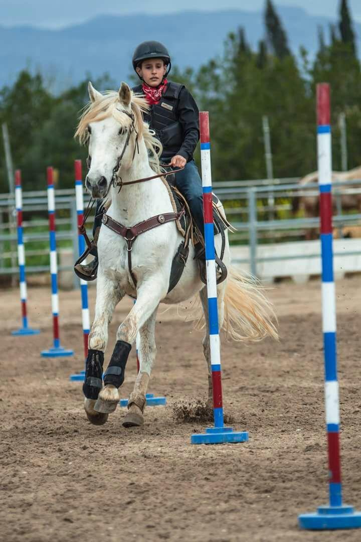 Clase monta western ( pole bending y barrel race)